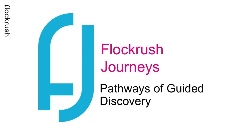 Pathways of Guided Discovery