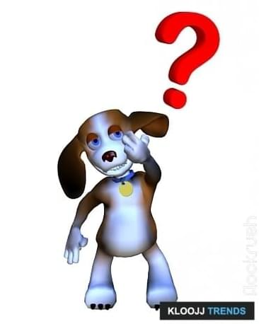Most Common Dog Questions