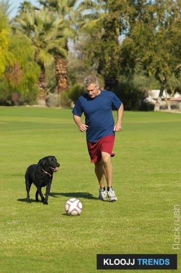 Teach Your Dog to Roll a Ball
