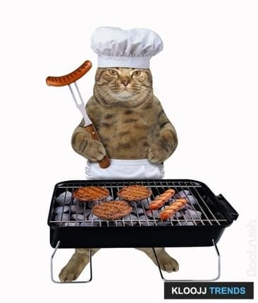 Why Your Cat Needs Meat