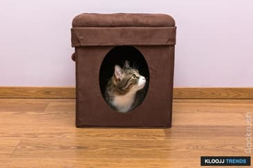 Give Your Cat His Own Place