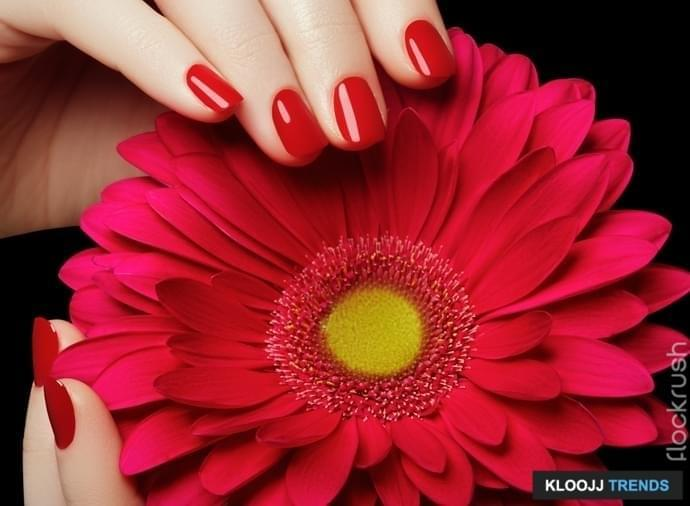 Beauty salon. Delicate hands with manicure holding pink flower close-up. Beautiful manicured nails, great idea for the advertising of cosmetics. Female hands with perfect red manicured nails
