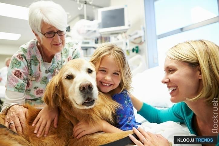Young Girl Being Visited In Hospital By Therapy Dog And Family