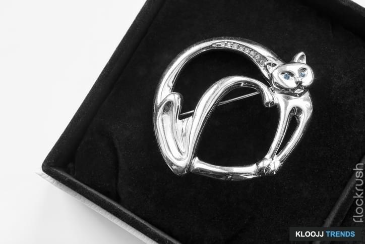 Silver cat brooch in black velvet box closeup