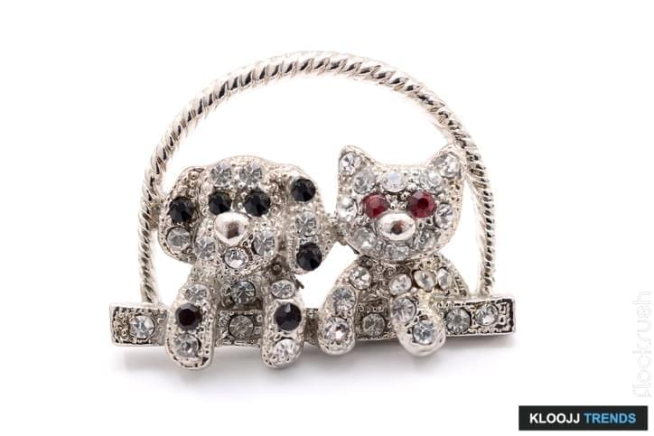 brooch as a kitten and dog on a white background