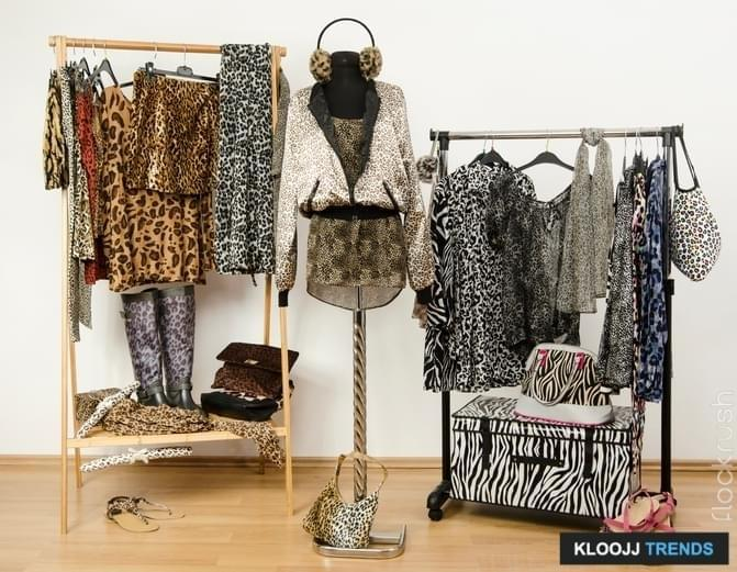 Dressing closet with animal print clothes arranged on hangers. Cheetah print fall outfit on a mannequin.