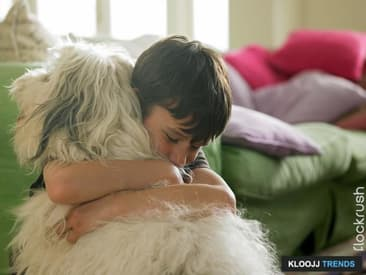Caring For Your Pup: The Top Tips