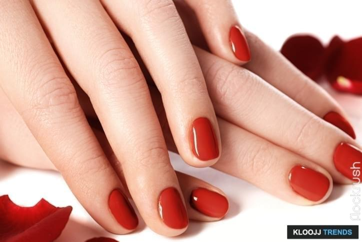 Beautiful Female Finger Nails With Red Nail Closeup On Petals Perfect Manicure Woman Hands