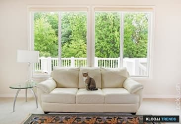 Free! Here Are Quick Ways To Make Your Cat Happy While Indoors
